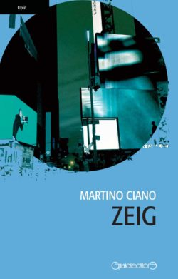 Zeig Book Cover